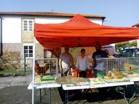 uploads/9/news/pilono-1.jpg